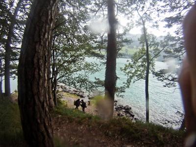 Vierwald